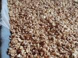 Продаём грецкий орех от тонны - photo 1